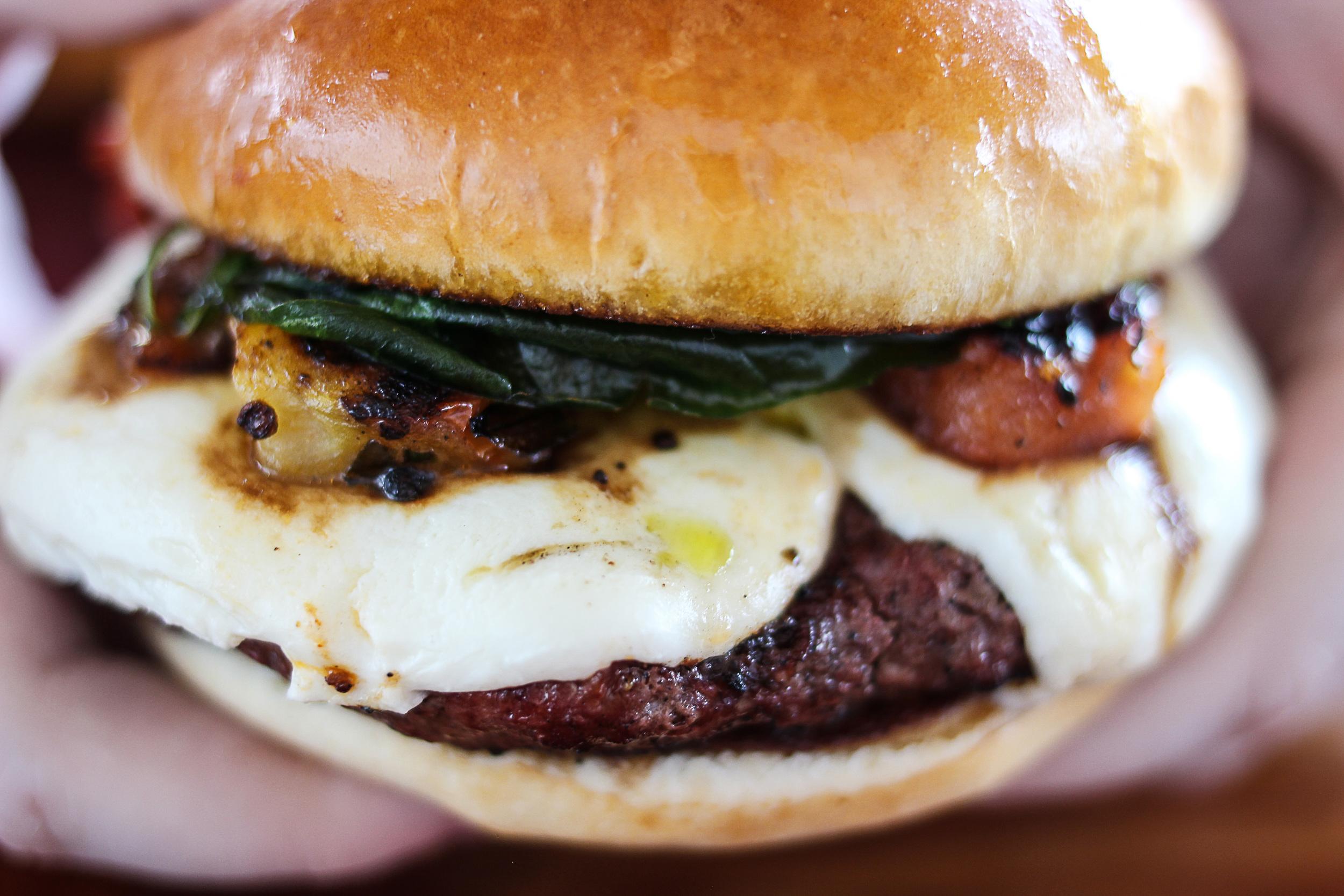 burgerhandSH.jpg