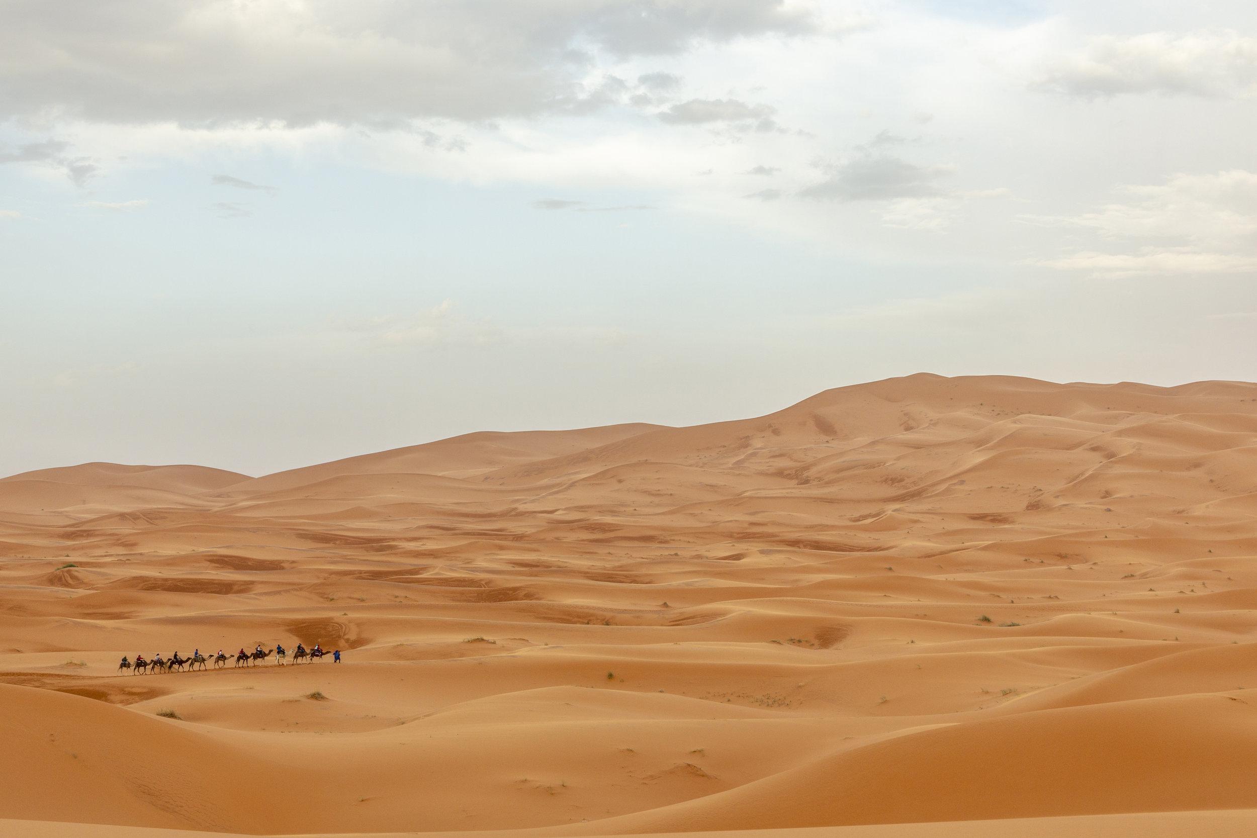 SAHARA-297.jpg