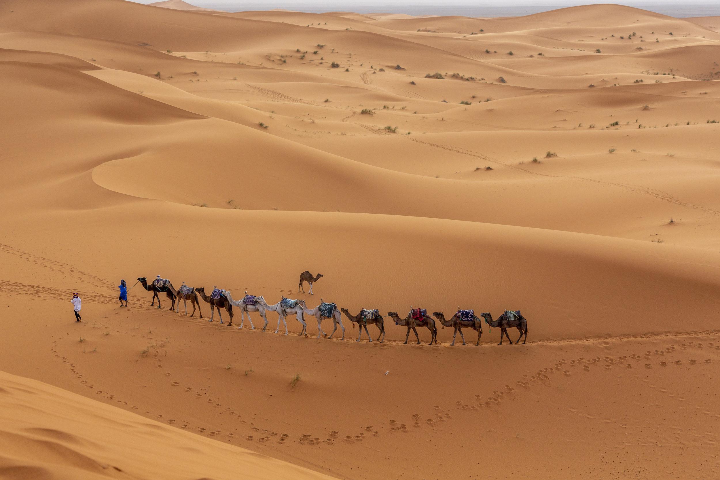 SAHARA-301.jpg