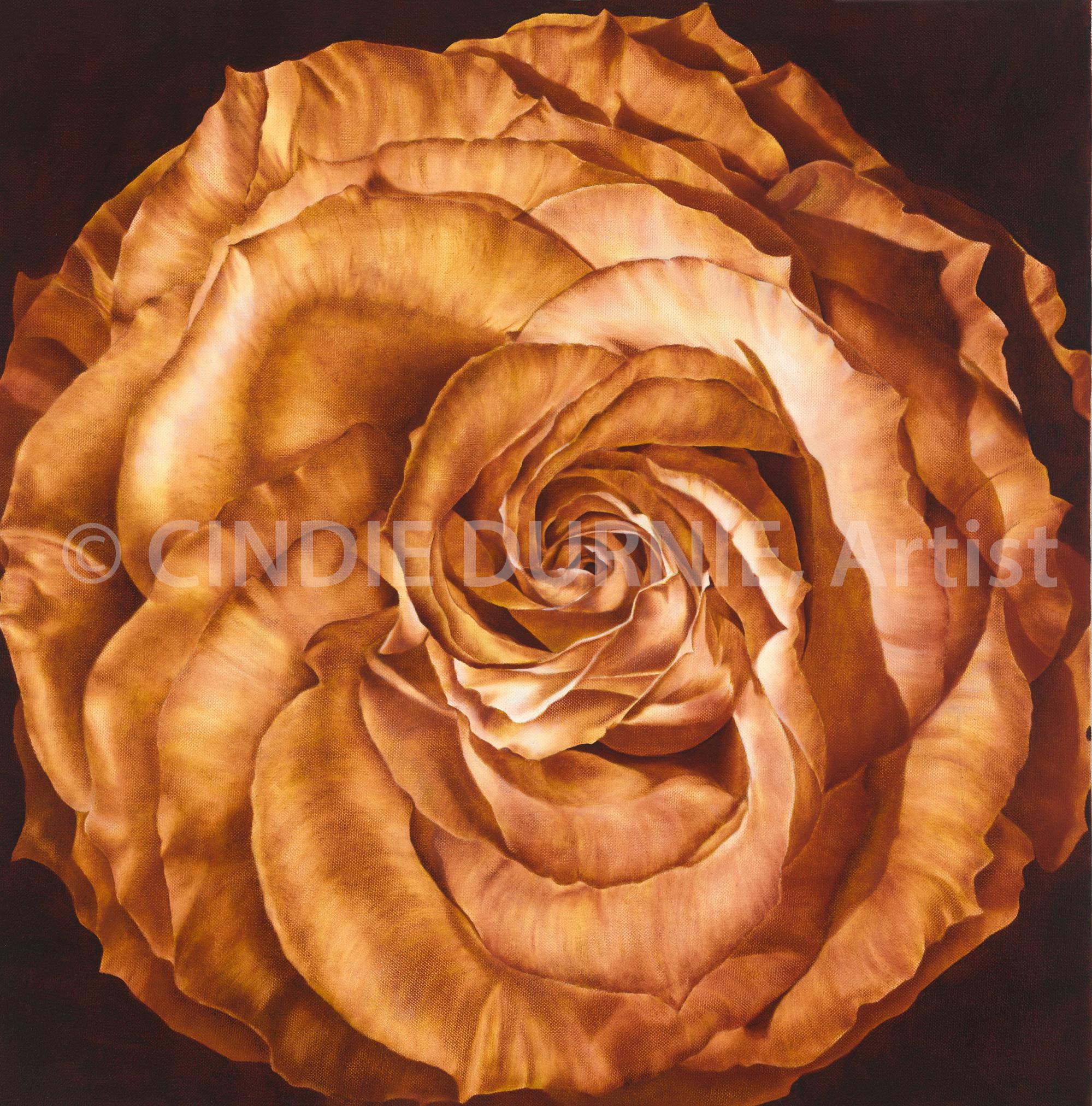 Rose Watermark.jpg