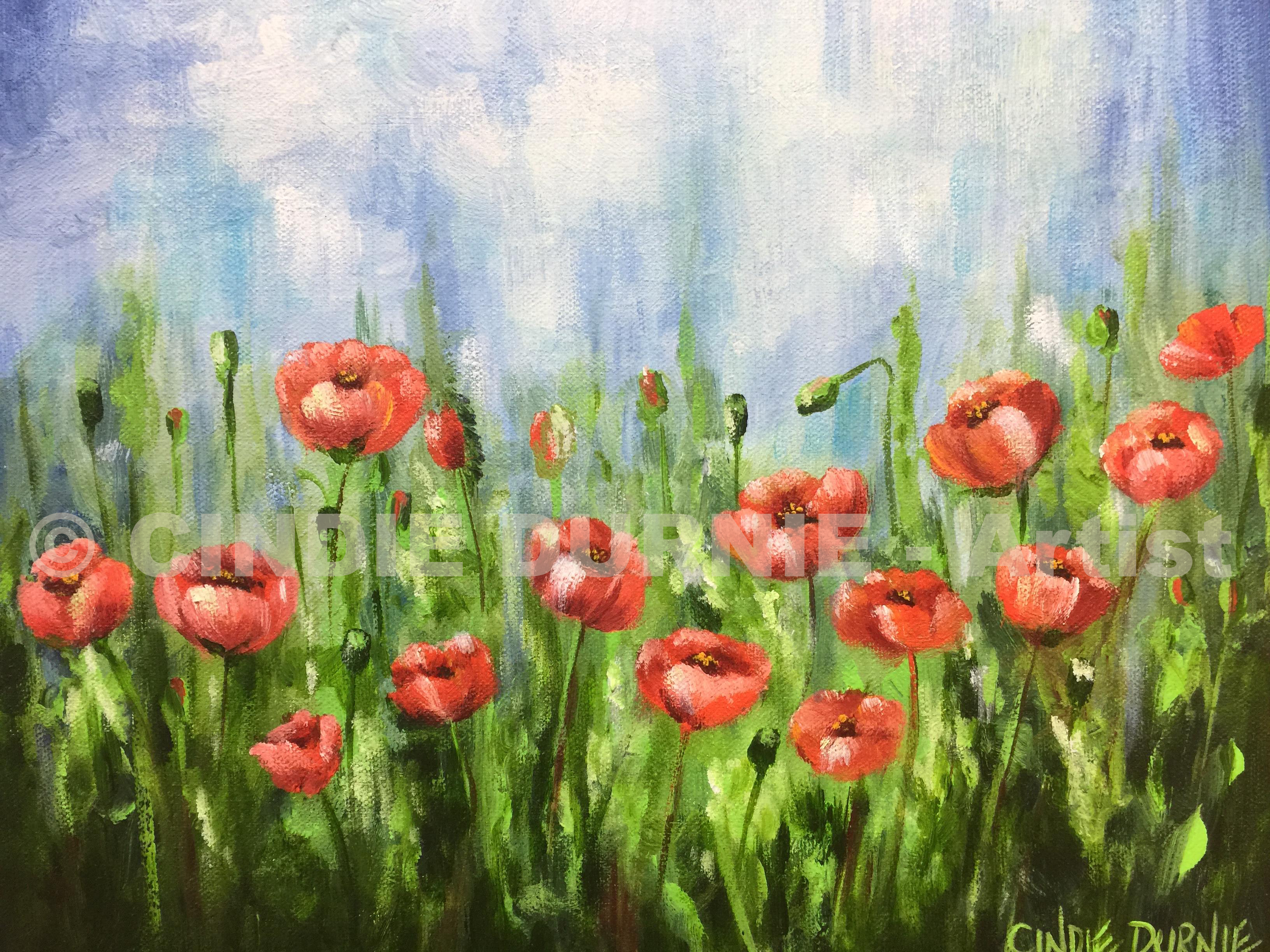 Wee Poppies