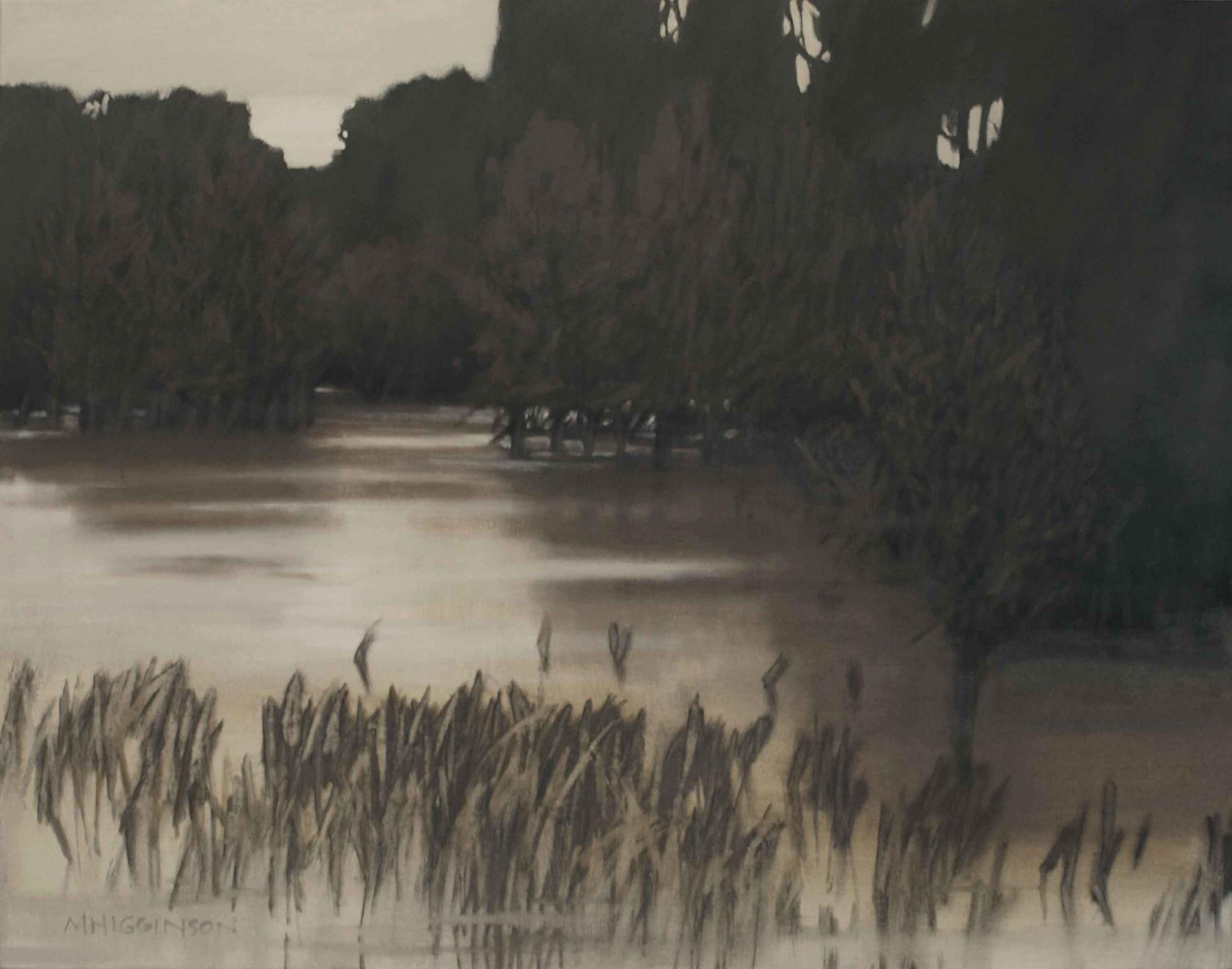 MHigginson_Flooded-Swale.jpg