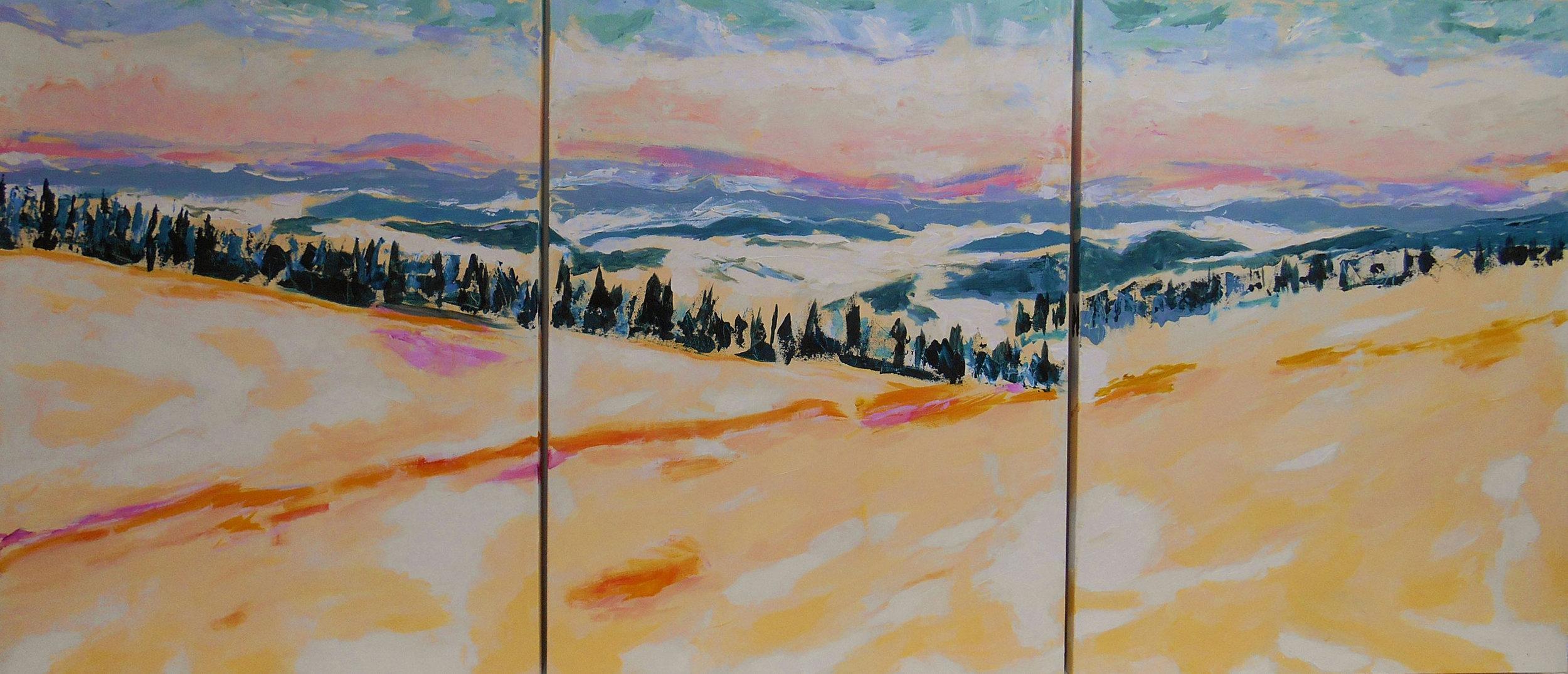 PDQuataert_Deep-Winter-Coast-Range-Triptych_web.jpg