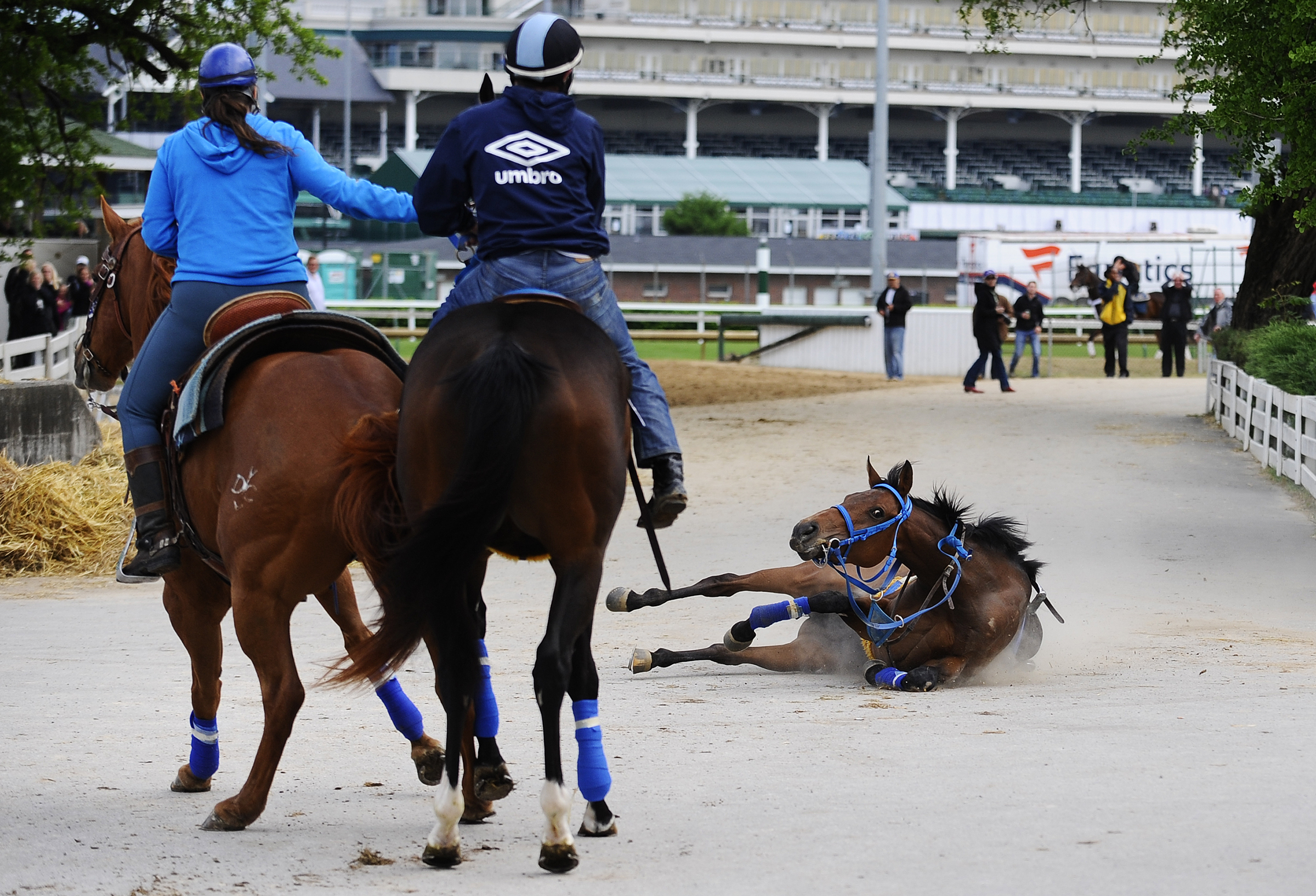 A run-away horse leaves the track and heads through the stable area before slipping on the concrete and falling to the ground. The horse was not injured and was quickly controlled.