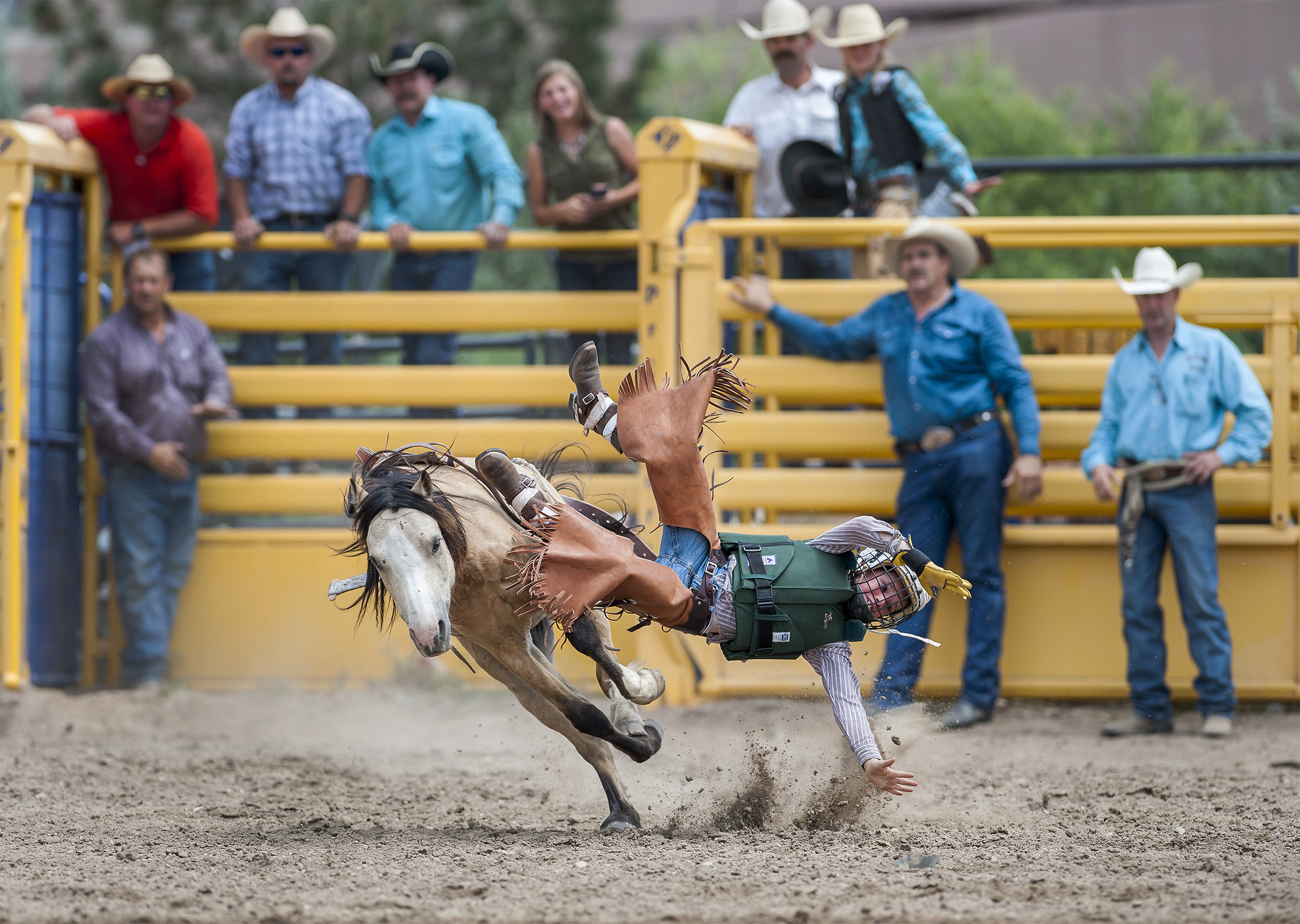 Triston Day, 8, of Hayden, Colorado, is bucked off his horse during the Mini Bareback Riding World Championship Semifinals held for the first time at the ProRodeo Hall of Fame arena in Colorado Springs, Colorado. Twenty of the best - and youngest - regional competitors put their bucking skills to the test for the chance to advance to the World Championships in Las Vegas in December.
