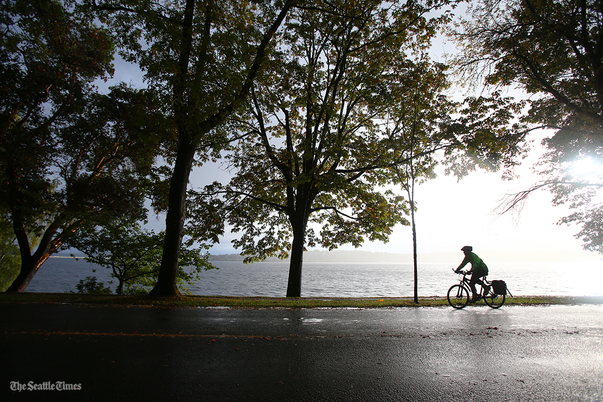 A cyclist makes his way down Lake Washington Blvd. through light rainfall on Friday, October 14, 2016. Heavy rainfall and strong winds are expected to hit Puget Sound on Saturday.