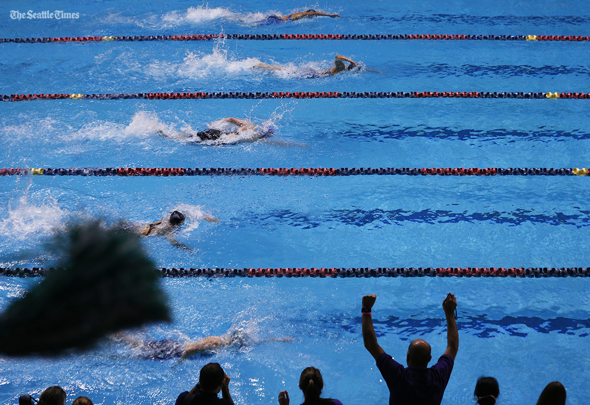 Fans cheer on the finals of the 500 yard freestyle during the 2016 4A Swimming State Championships held at the King County Aquatic Center in Federal Way on Saturday, November 12, 2016.