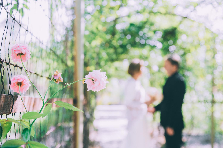 2015_10_17_KevinandLindas_Wedding_0155.jpg