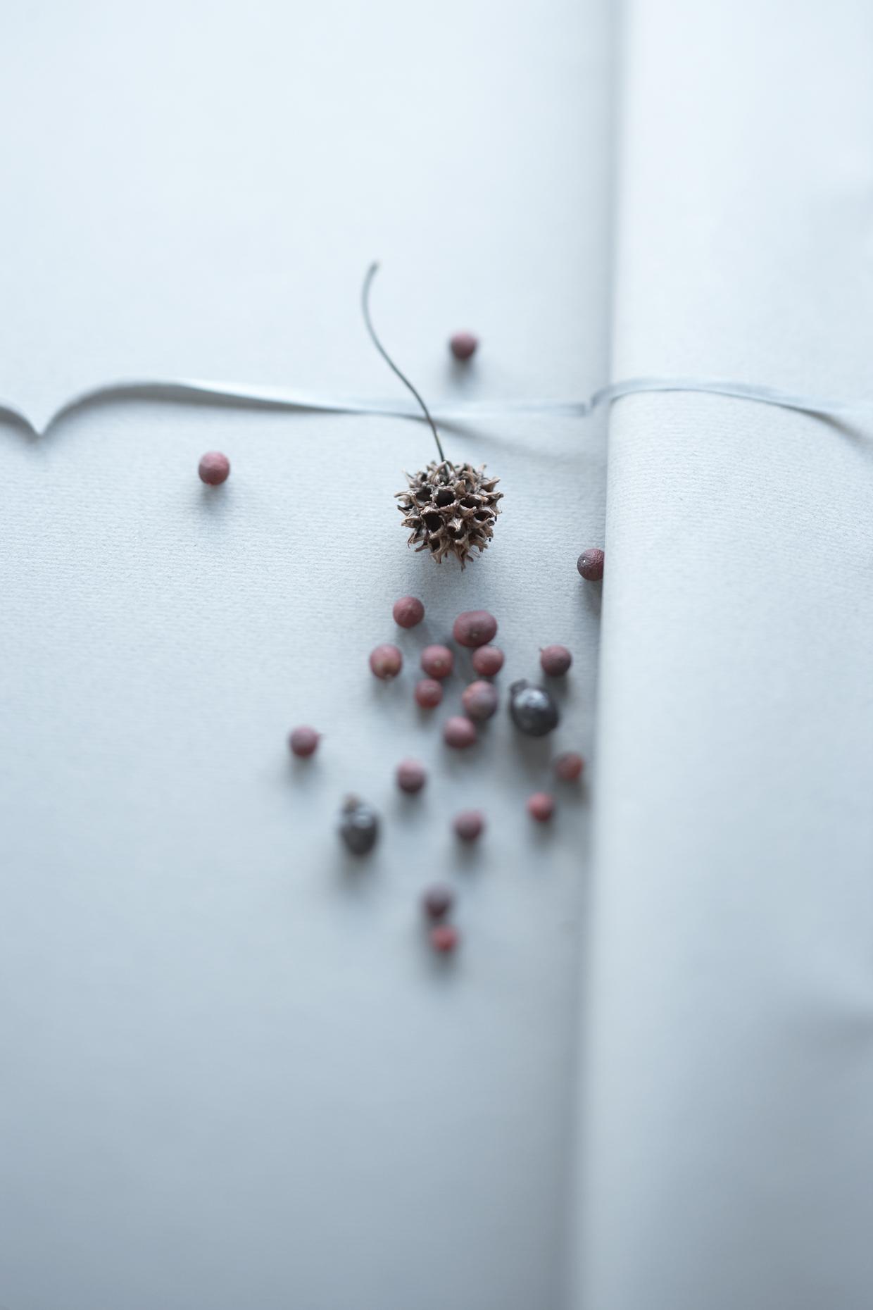 Product Photography StillLife Derek Israelsen Berries