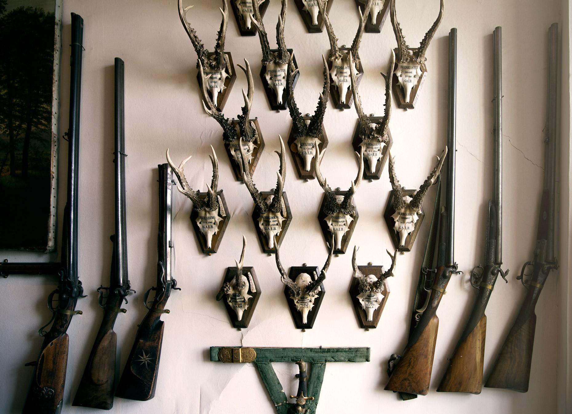 Product Photography Still Life Derek Israelsen Skulls Hunting trophies