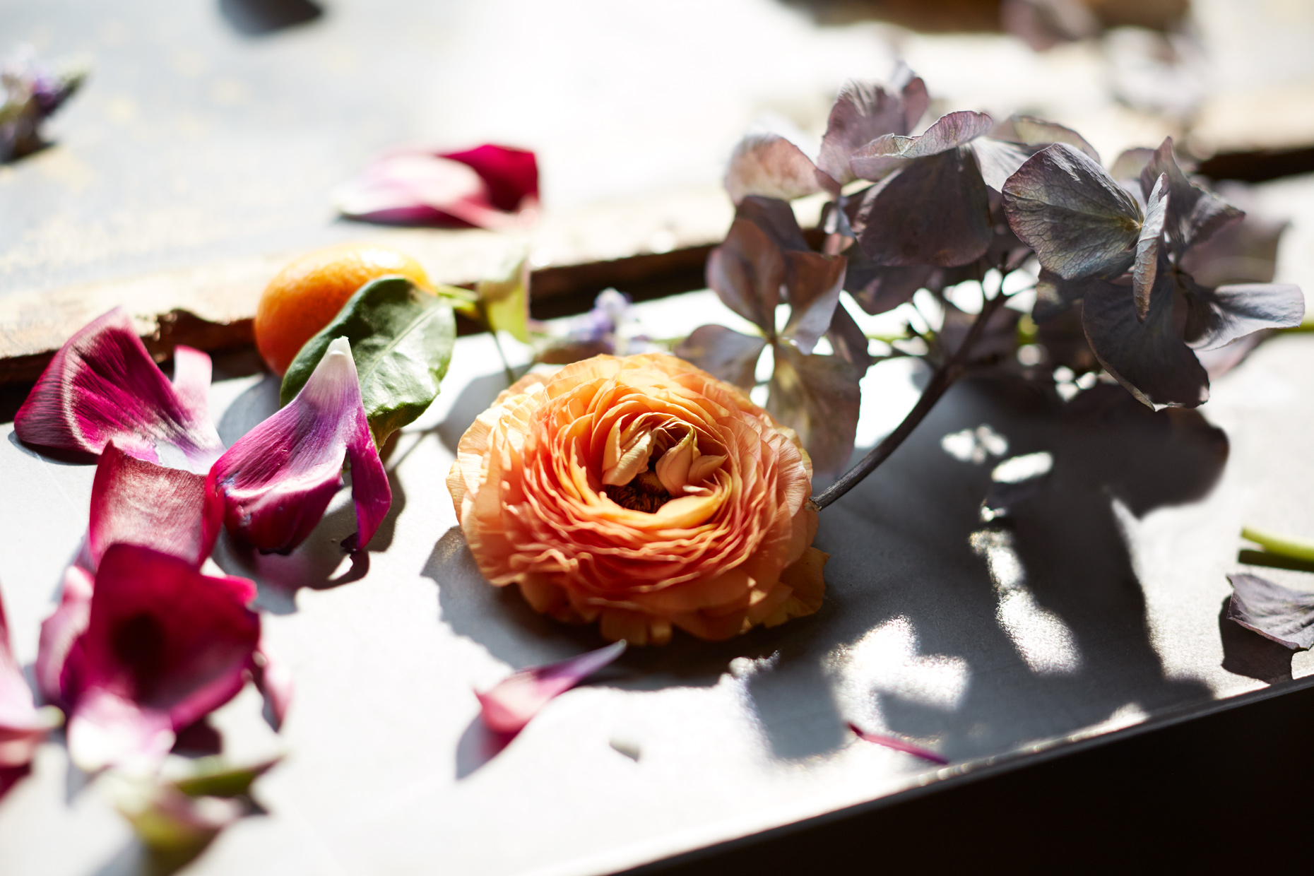 Product Photography StillLife Derek Israelsen Fall Flowers