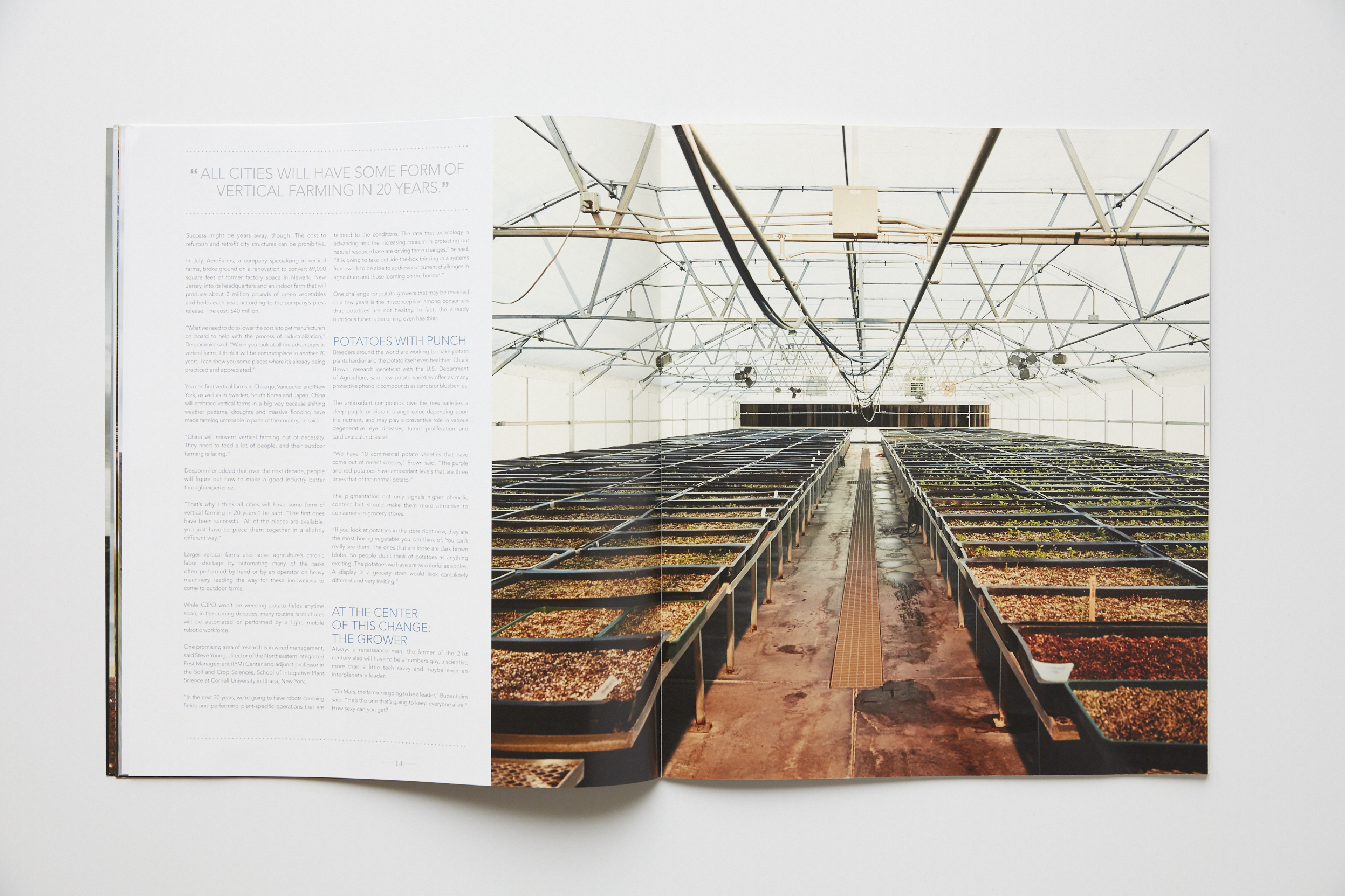 CWT Magazine 005 by Derek Israelsen Green House.jpg
