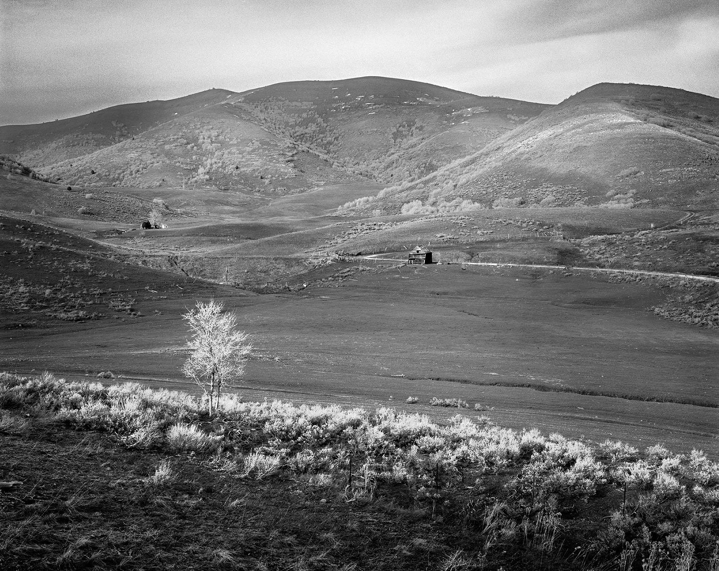 Landscape-Derek-Israelsen-042.jpg