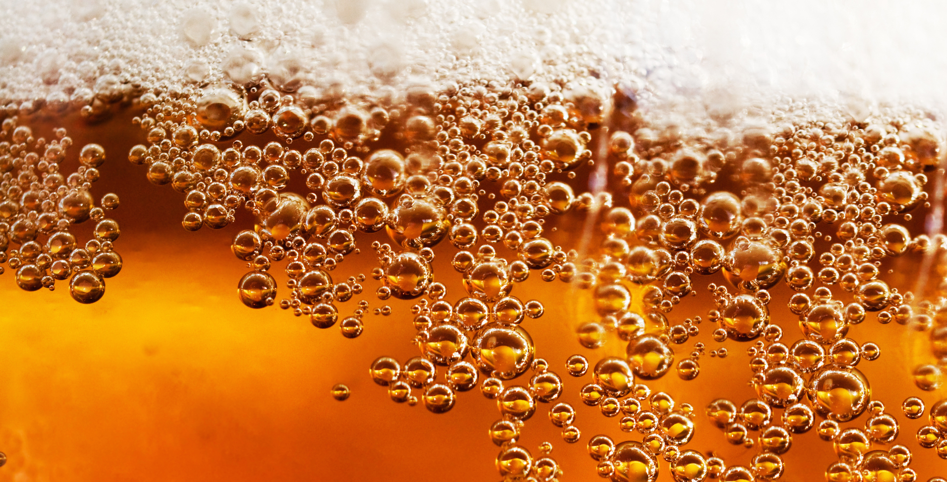Beer Close up cover image