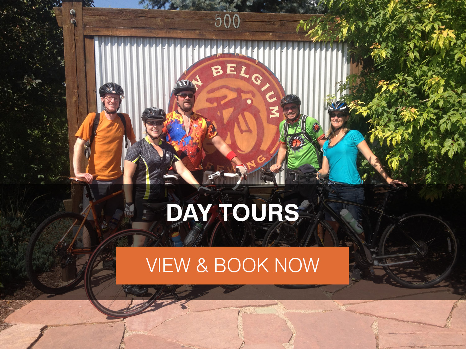 Day Tours Button Home Page.jpg
