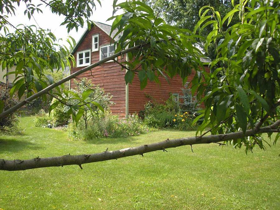 Ros's barn studio and garden. Photo Simona David.