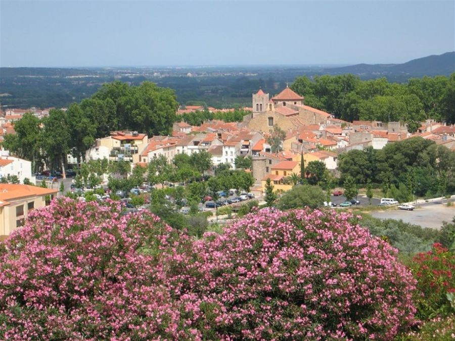 Céret with cherry trees in the foreground and the Mediterranean in the distance.