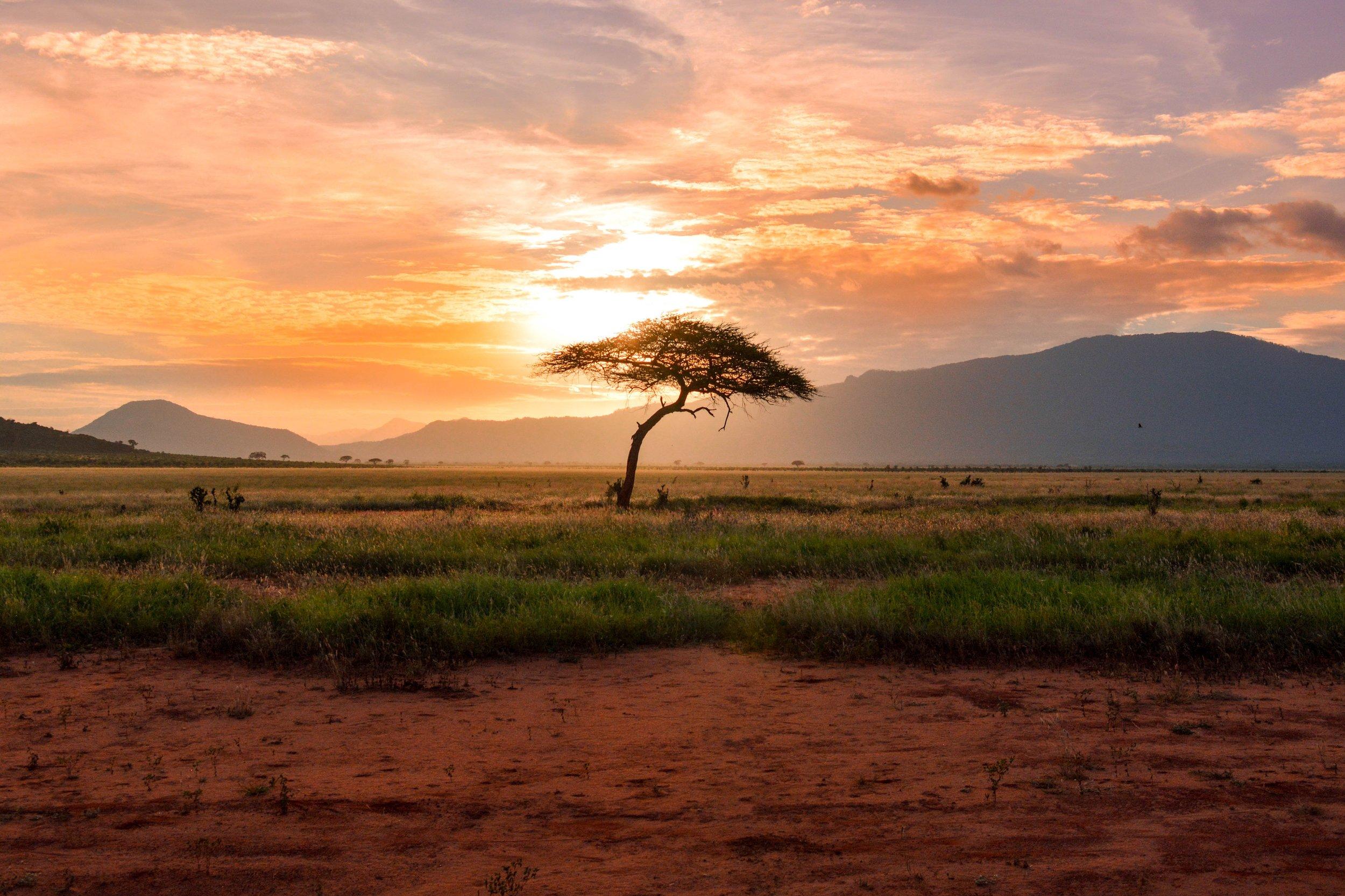 retreats in africa