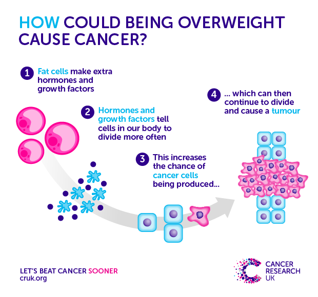 161011-How-excess-weight-causes-cancer-BLOG.png