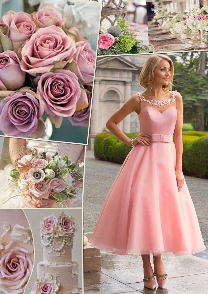 Modeca Bridal & Jasmine Bridal