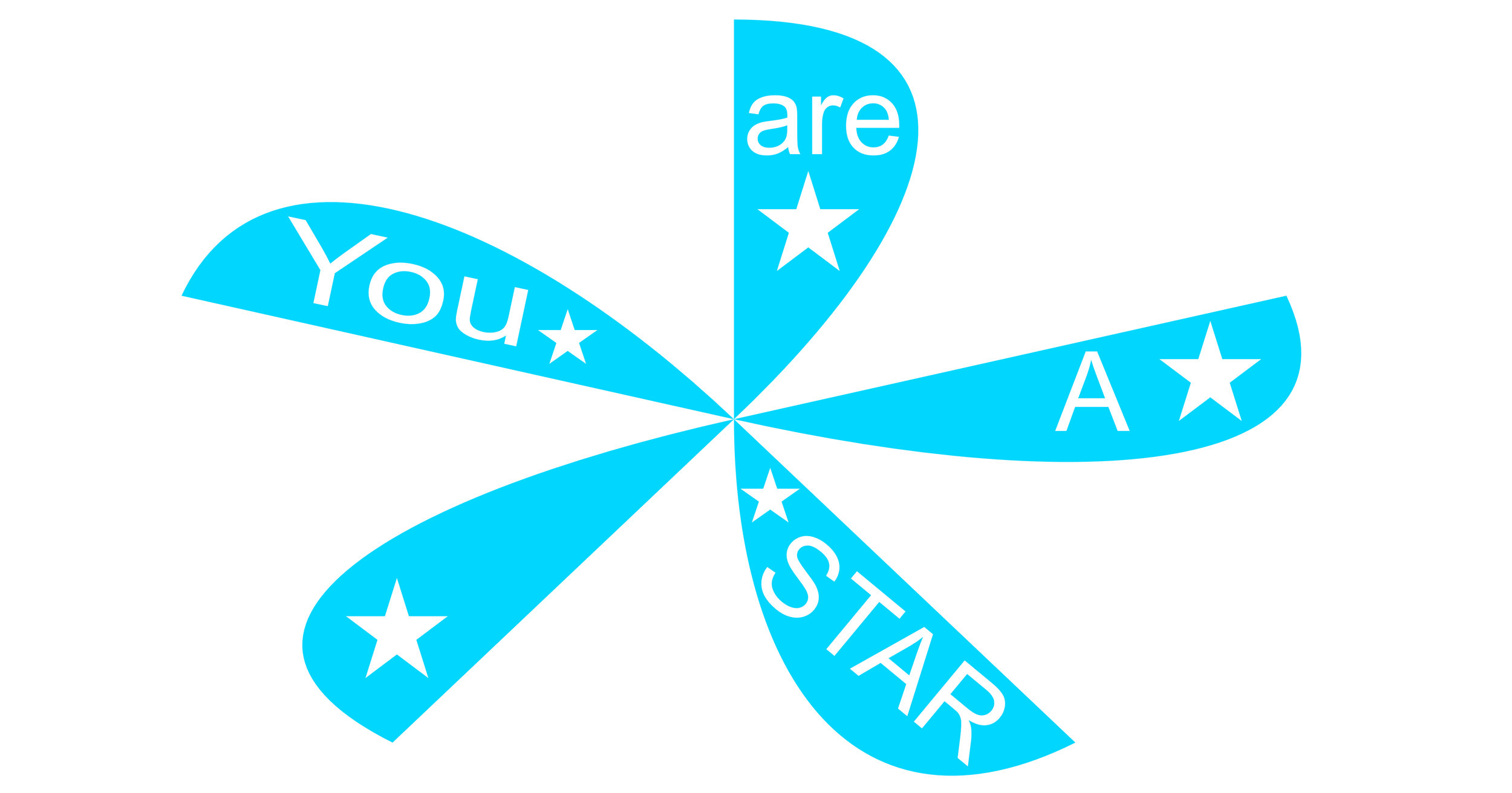 YOU ARE A STAR copy.jpg