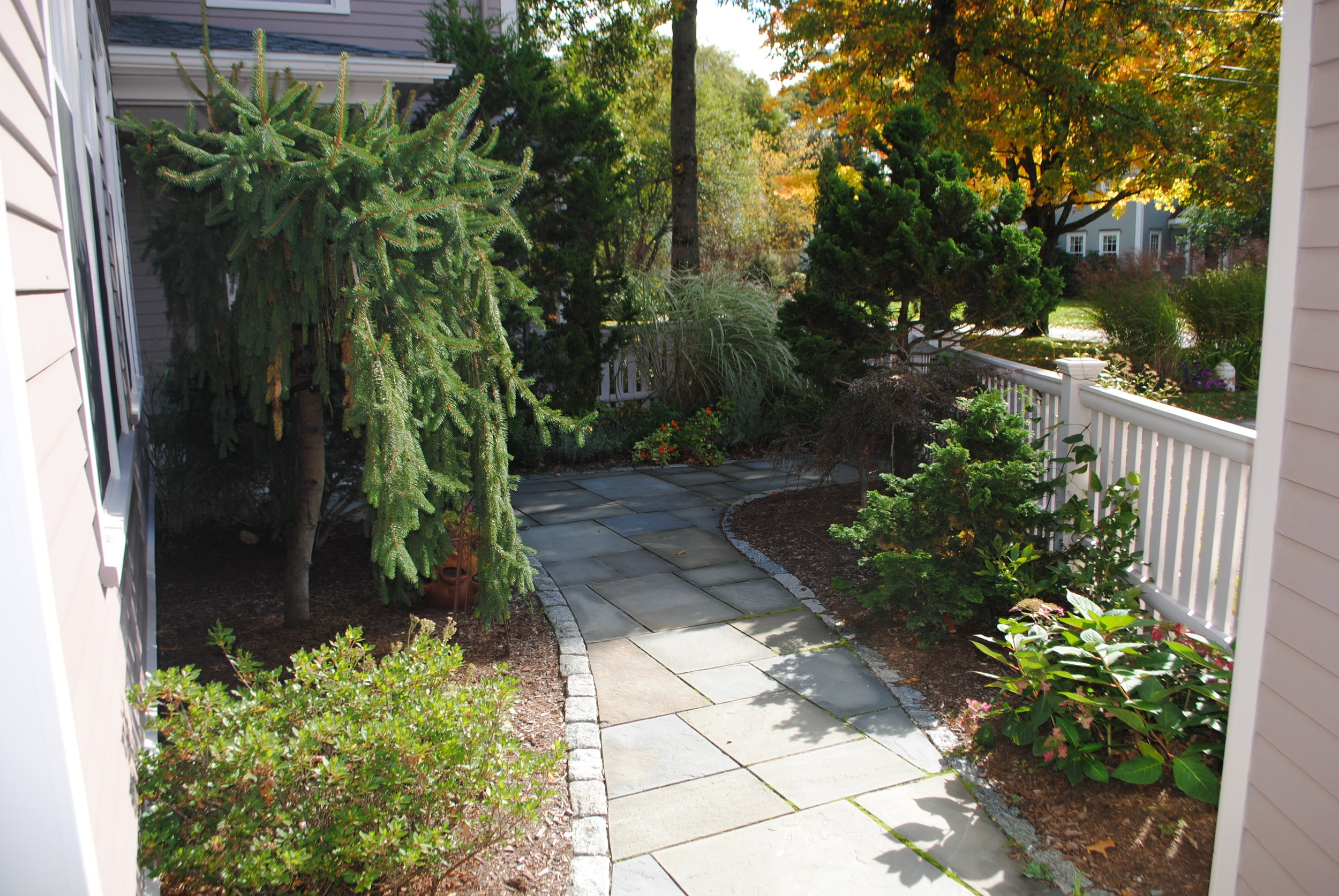 Overgrown shrubs are moved elsewhere and replaced with smaller shrubs that fit the scale of the space. A more formal and easier to maintain path leads to the garage.