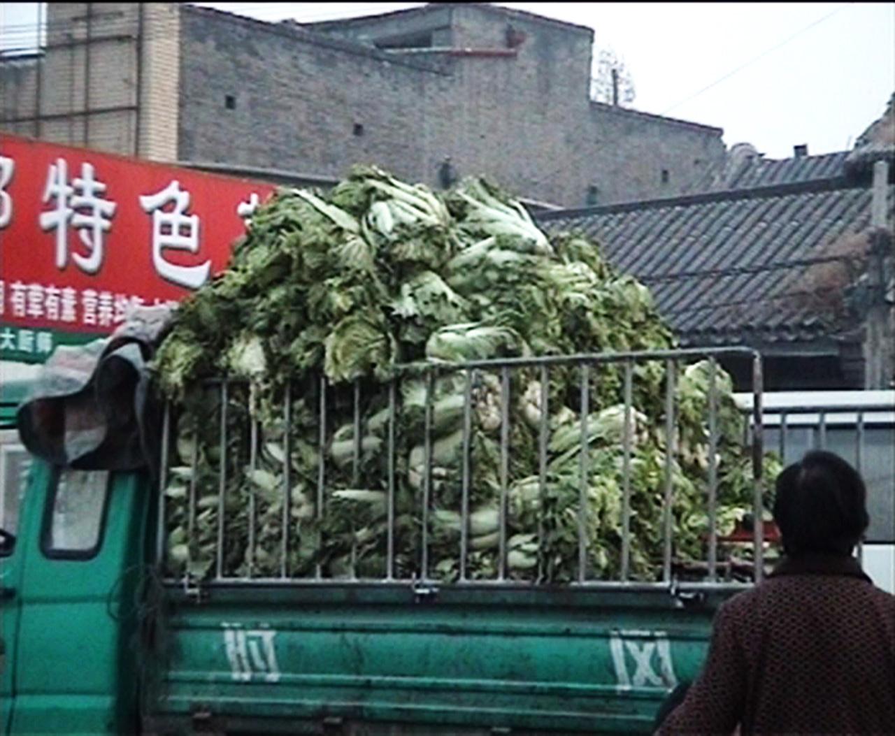 Chinese cabbage03-1280.jpg