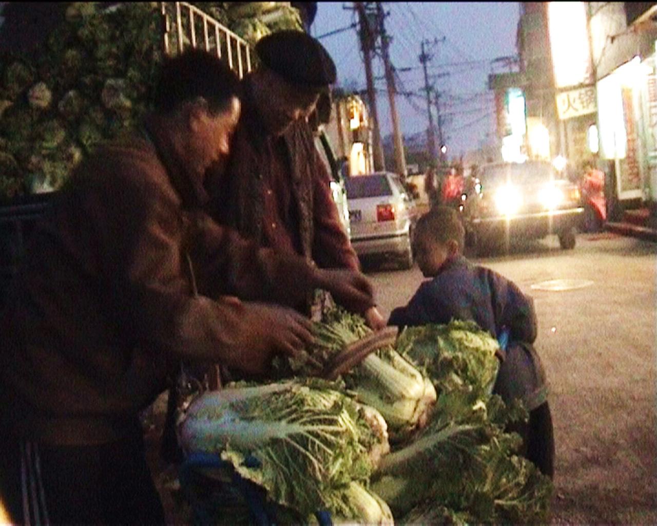 Chinese cabbage01-1280.jpg