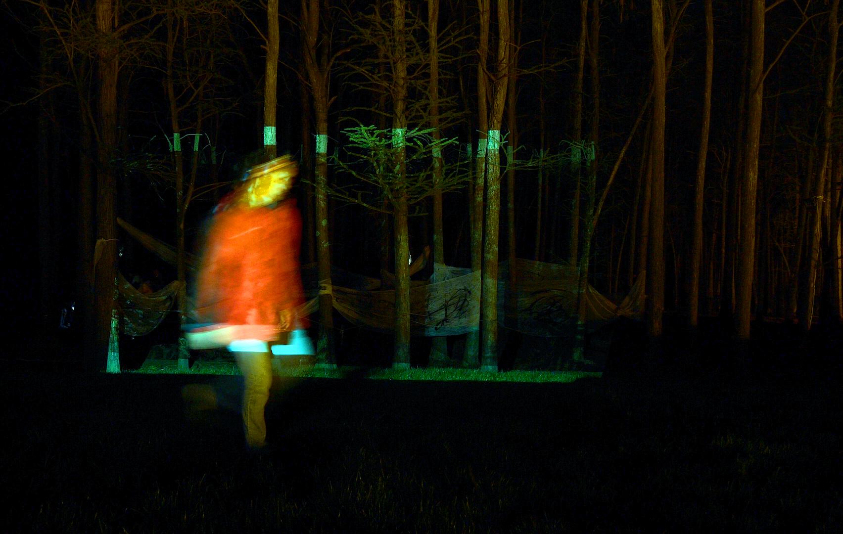 绘画投影装置 - 将沈爱其的水墨画投影到杉树林中