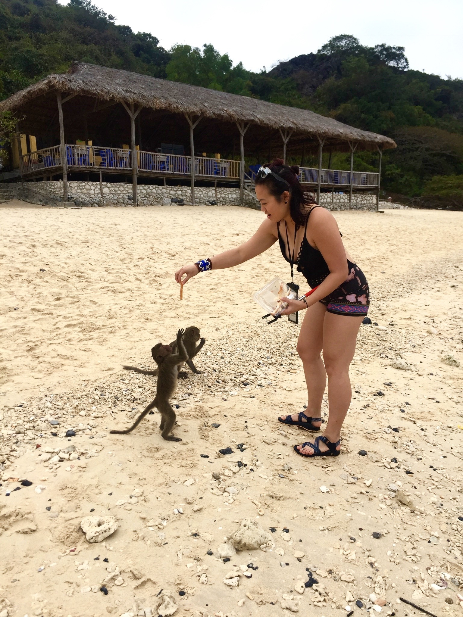 Monkey Island,Vietnam