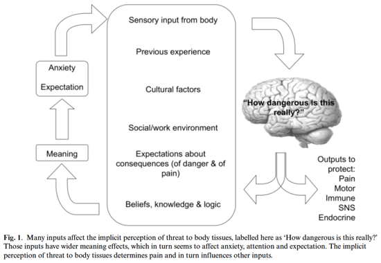 https://bodyinmind.org/resources/journal-articles/full-text-articles/reconceptualising-pain-according-to-modern-pain-science/