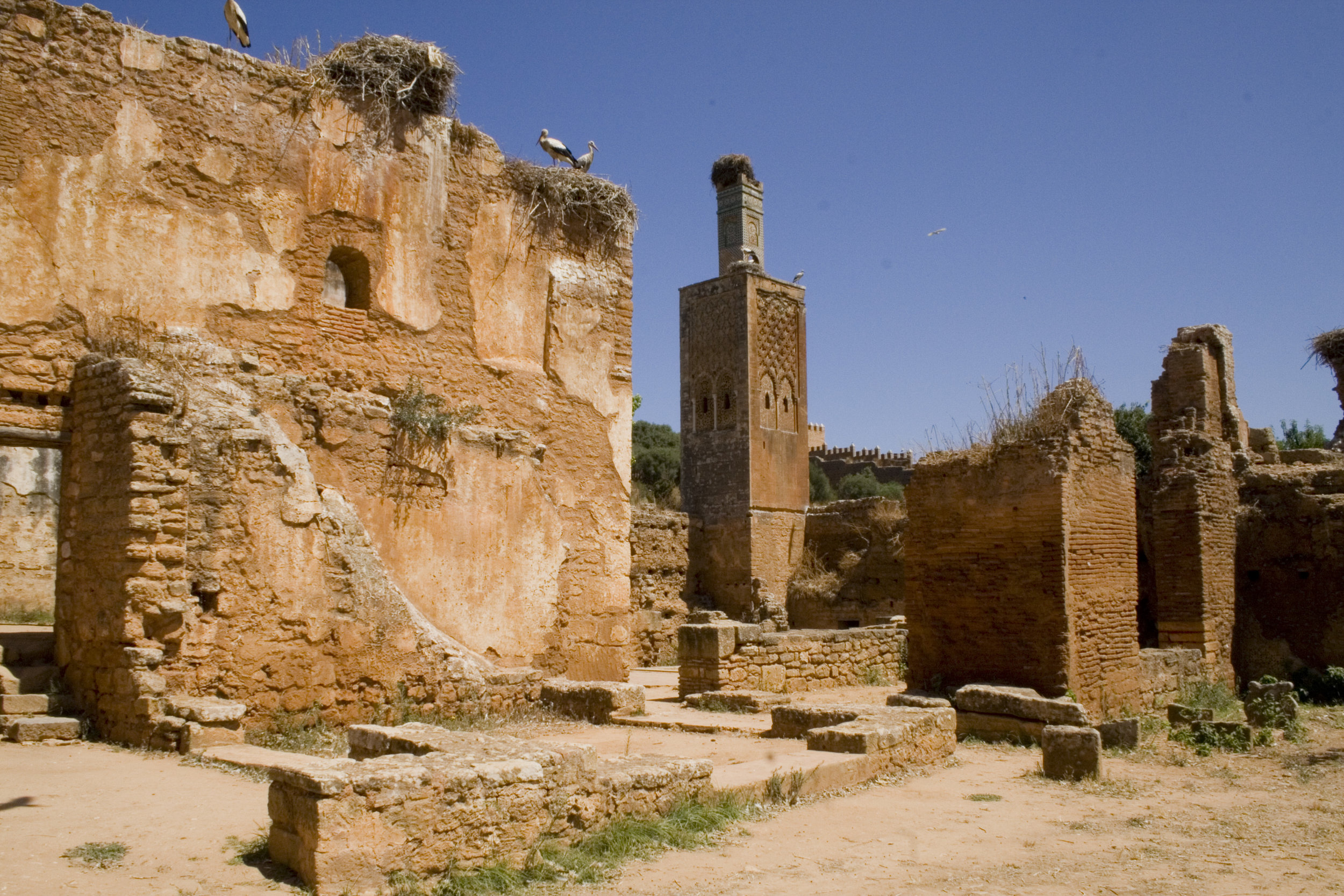Rabat - Chellah.JPG