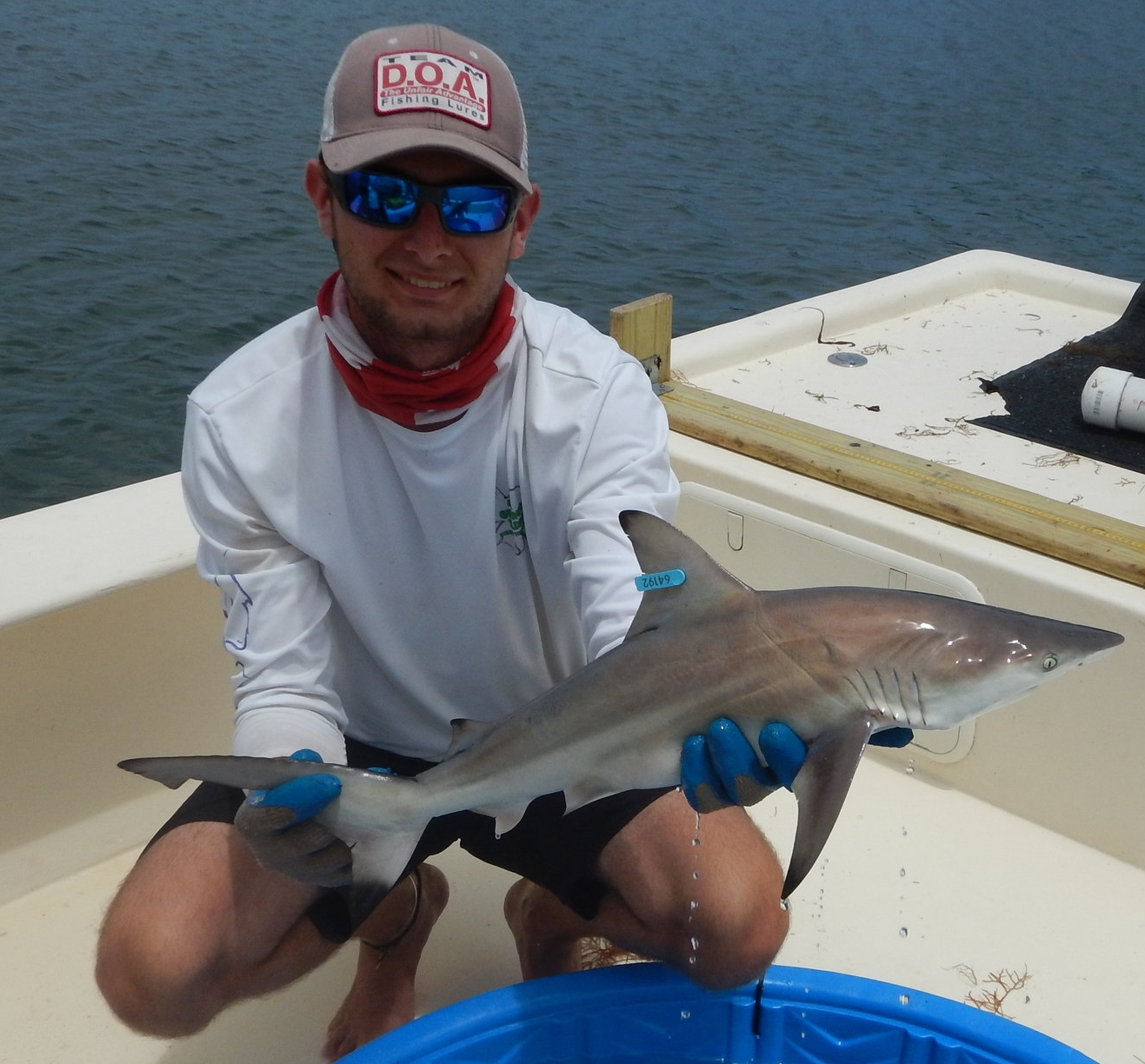 Alex Allen - Alex came to us from Florida Gulf Coast University (expected graduation May 2018).Alex worked on all projects of the Fisheries Ecology and Conservation Lab, but was principally in charge of Red Drum husbandry and captive observations of external tag impacts on fish behavior.