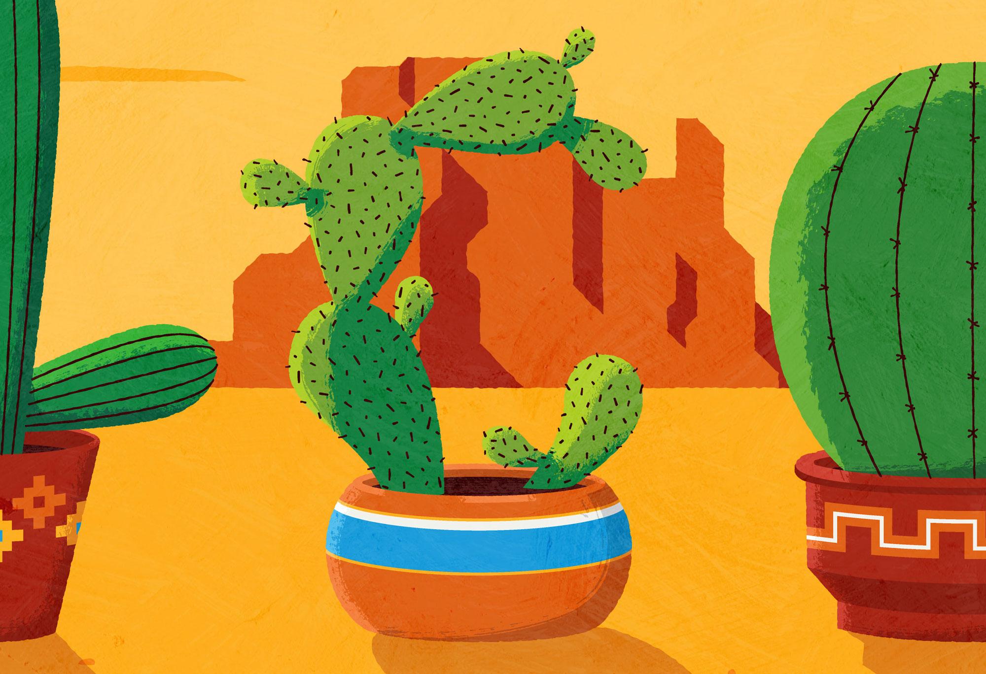 cactus_zoom.jpg