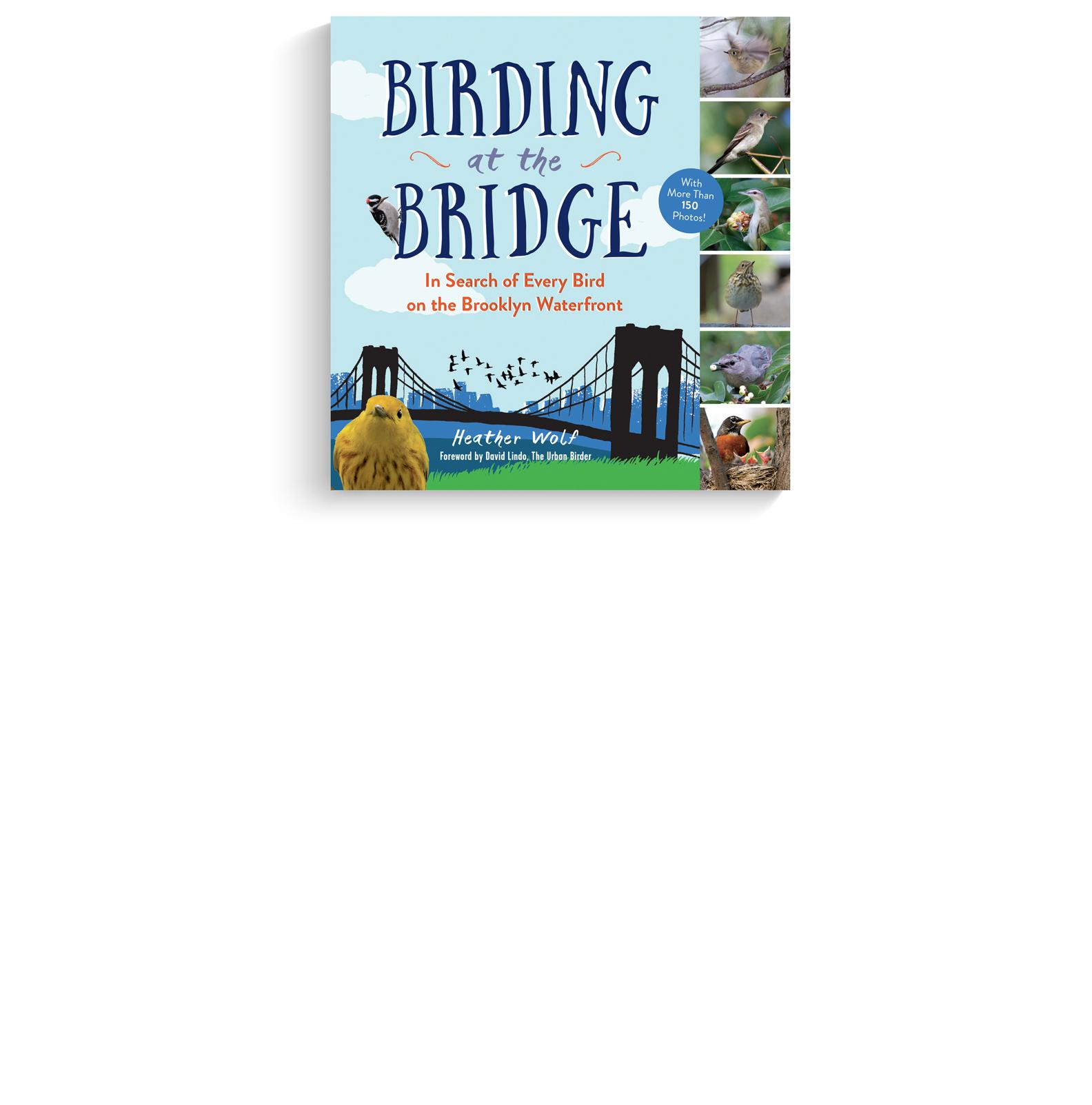 birding.jpg