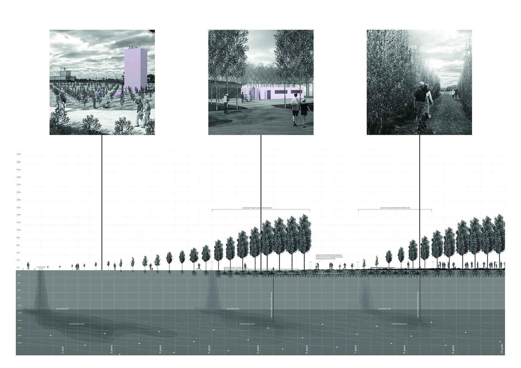 Copy of 5 KEY IMAGES-3.jpg