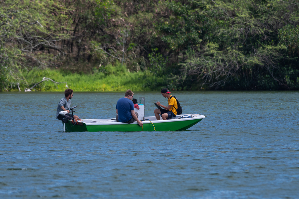 Measuring profiles of salinity, chlorophyll and oxygen concentrations in the water.