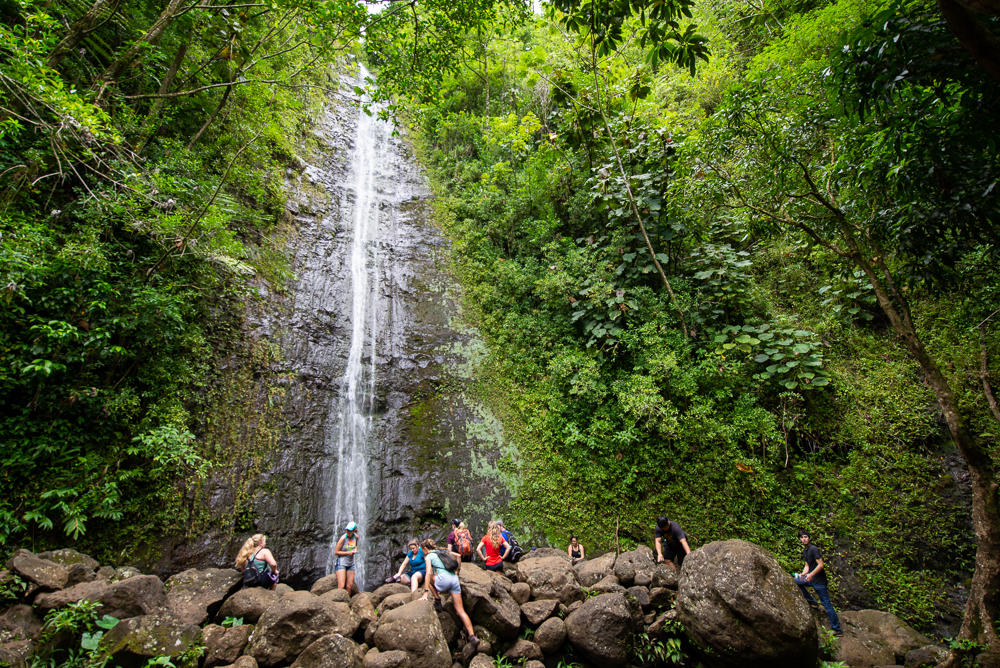 Manoa falls in the forests of Manoa valley.