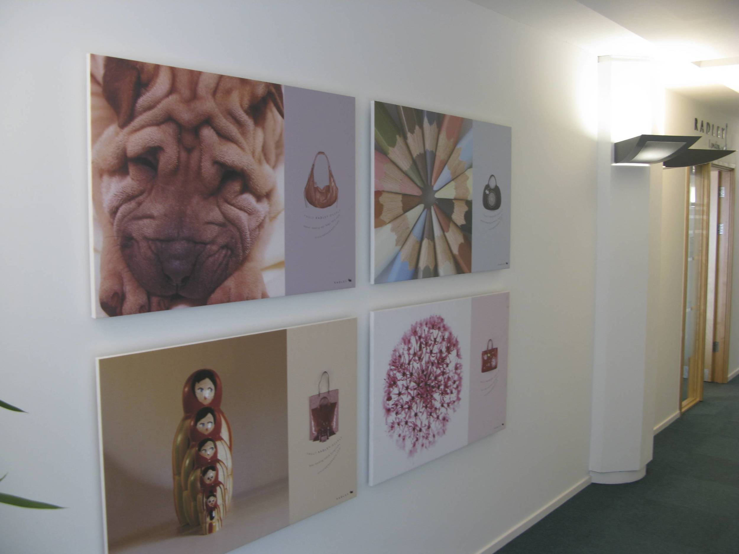 Radley HQ wall canvasses