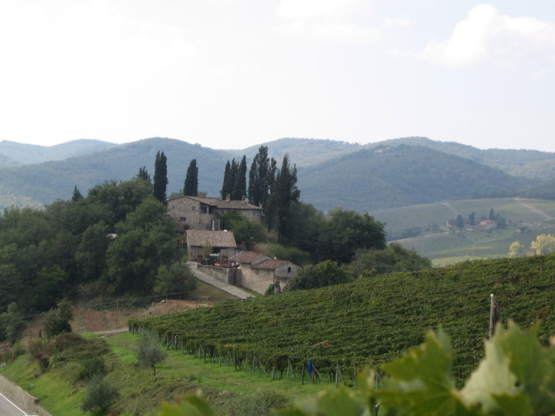 Monti Bernardi 7330450_orig.jpg