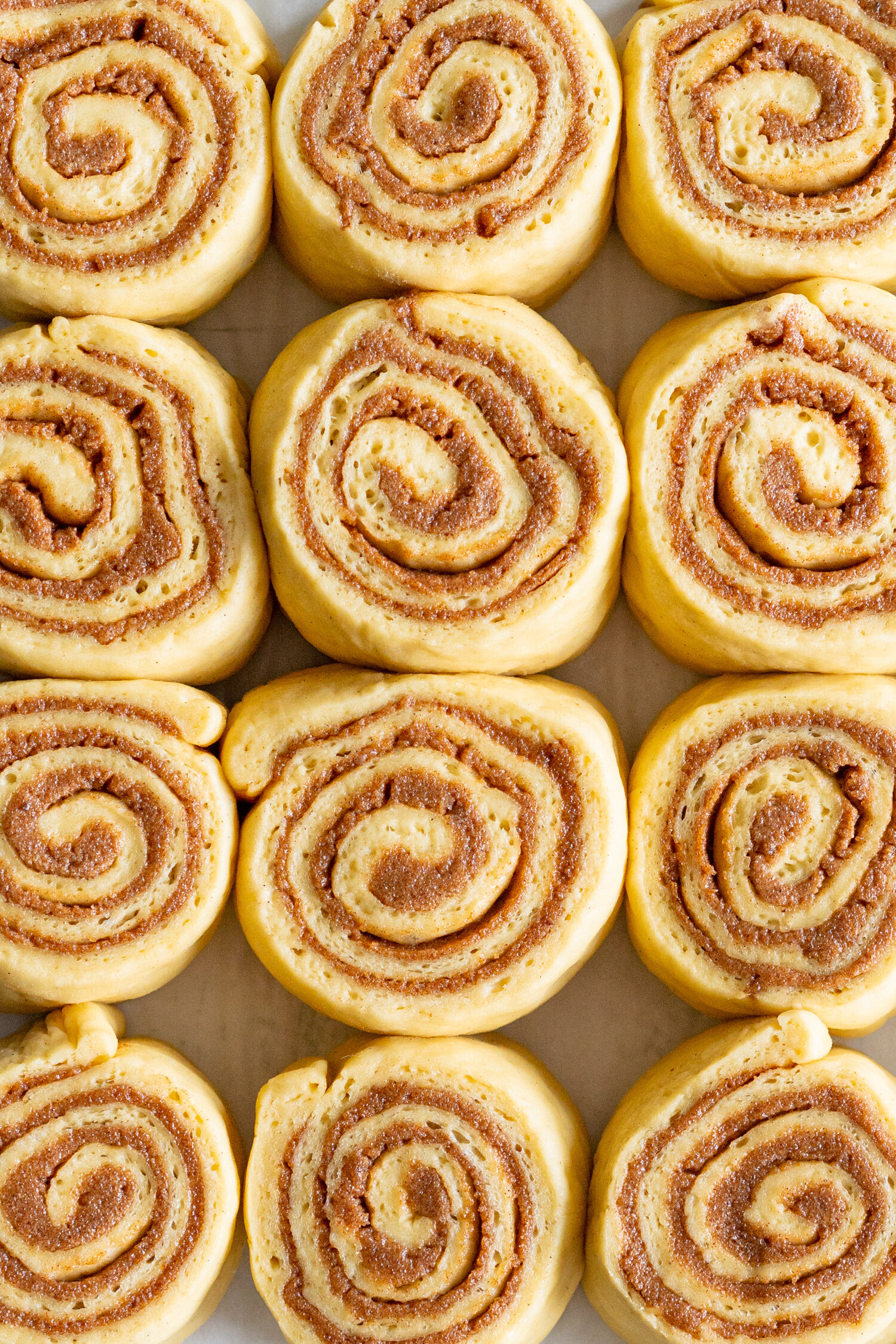 Brown Butter Cinnamon Rolls with Brown Butter Cream Cheese Frosting. Fluffy Brioche is filled with a spiced brown sugar and brown butter cinnamon filing, then rolled up and formed into perfect rolls. The rolls are then baked to perfection, and slathered in a brown butter cream cheese frosting, loaded up with specks of vanilla bean and brown butter. These are the perfect take on a cinnamon roll - the extra effort is well worth it! #brownbuttercinnamonroll #brownbutter #creamcheesefrosting