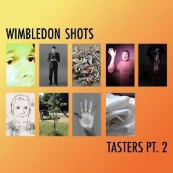 wimbledon shots image matt.jpg
