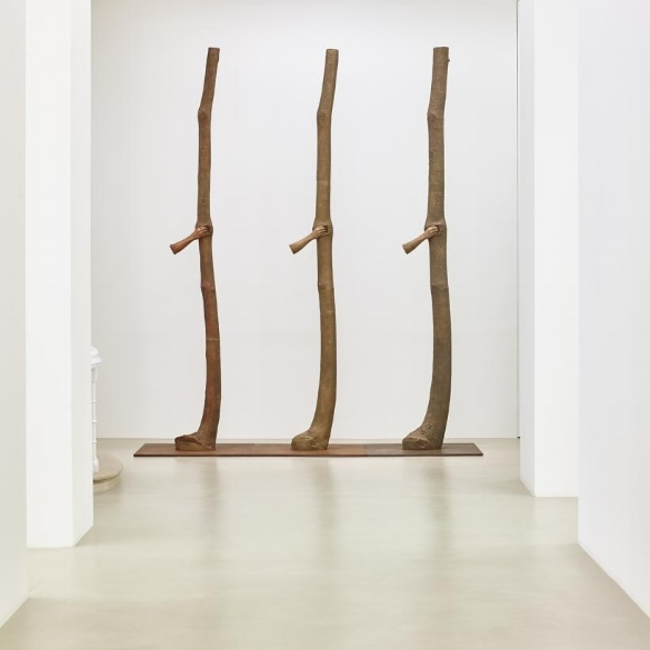 Guiseppe Penone: Intruding into the growth of trees