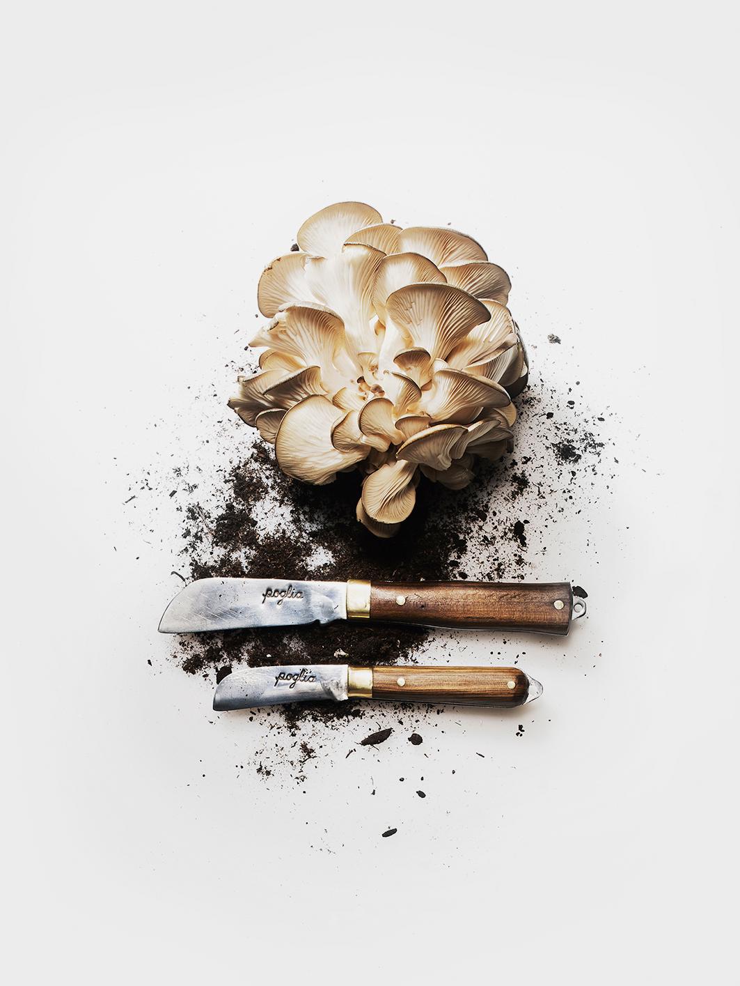 kitchen-knives-1.jpg