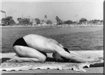 Sohot-Bikram-Hot-Yoga-London-Half-Tortoise