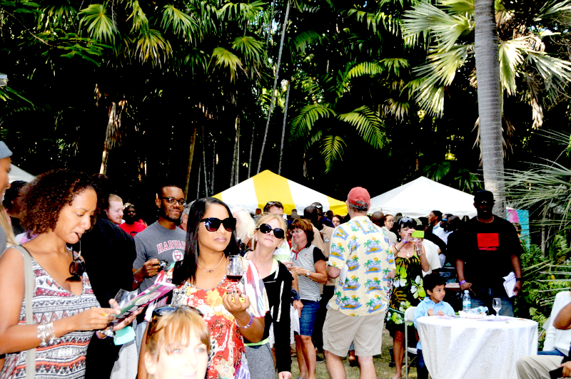 Visitors at the BNT Wine and Art Festival 2015