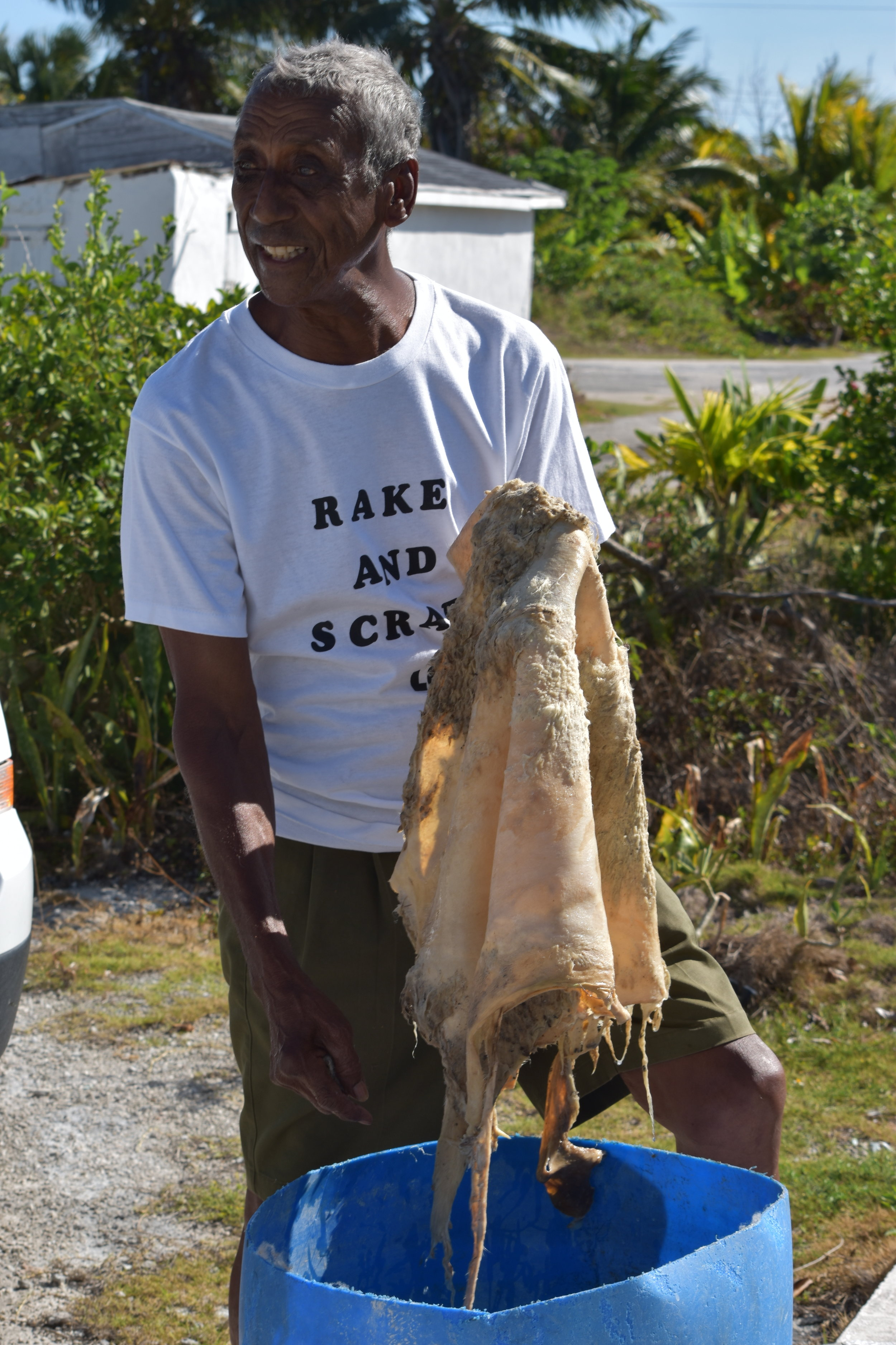 Rake 'n' Scrape master, Orlando Turnquest, demonstrating how to clean a goat skin in lime and water in Long Island.