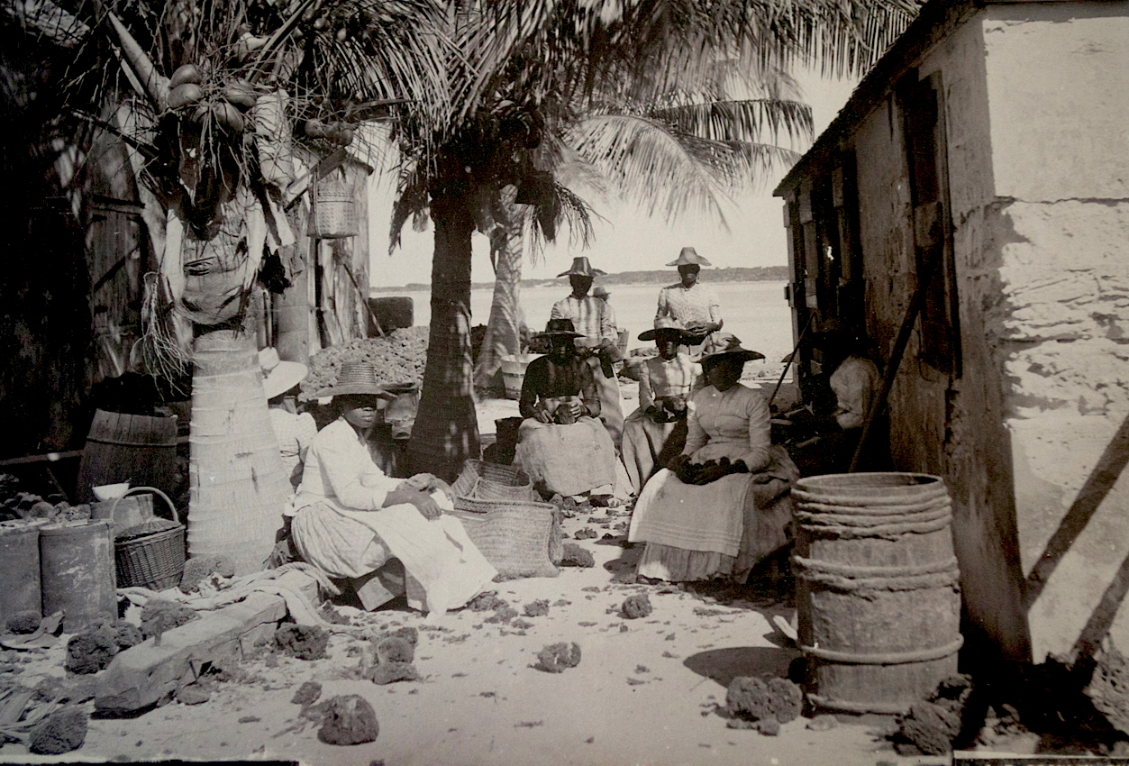 """""""A Sponge Yard - Trimming"""" (ca. 1870-1920), Jacob F Coonley, albumen print, 7 x 8. Part of the National Collection, previously owned by R. Brent Malone."""