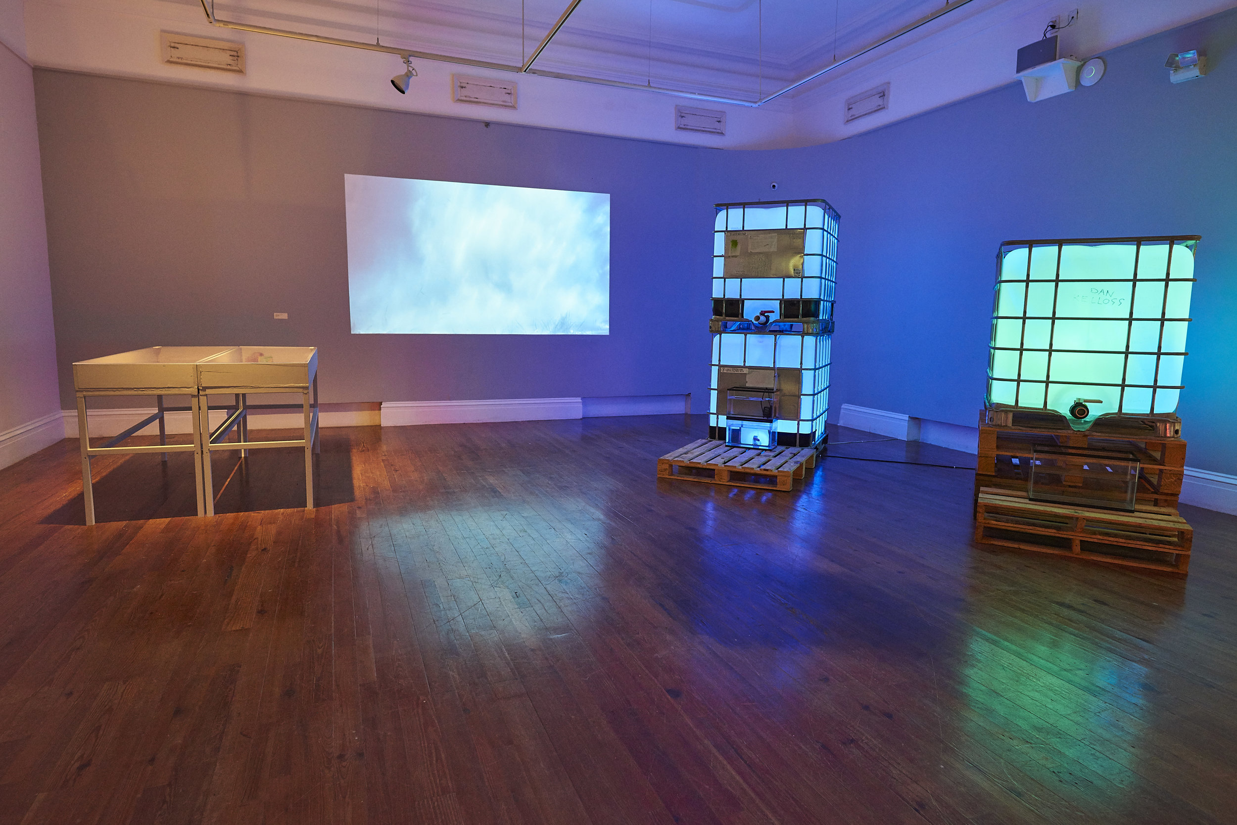 Install shot of works in Double Dutch that look at Ragged Island as a space of infinite positive possibilities. Image by Dante Carrer.