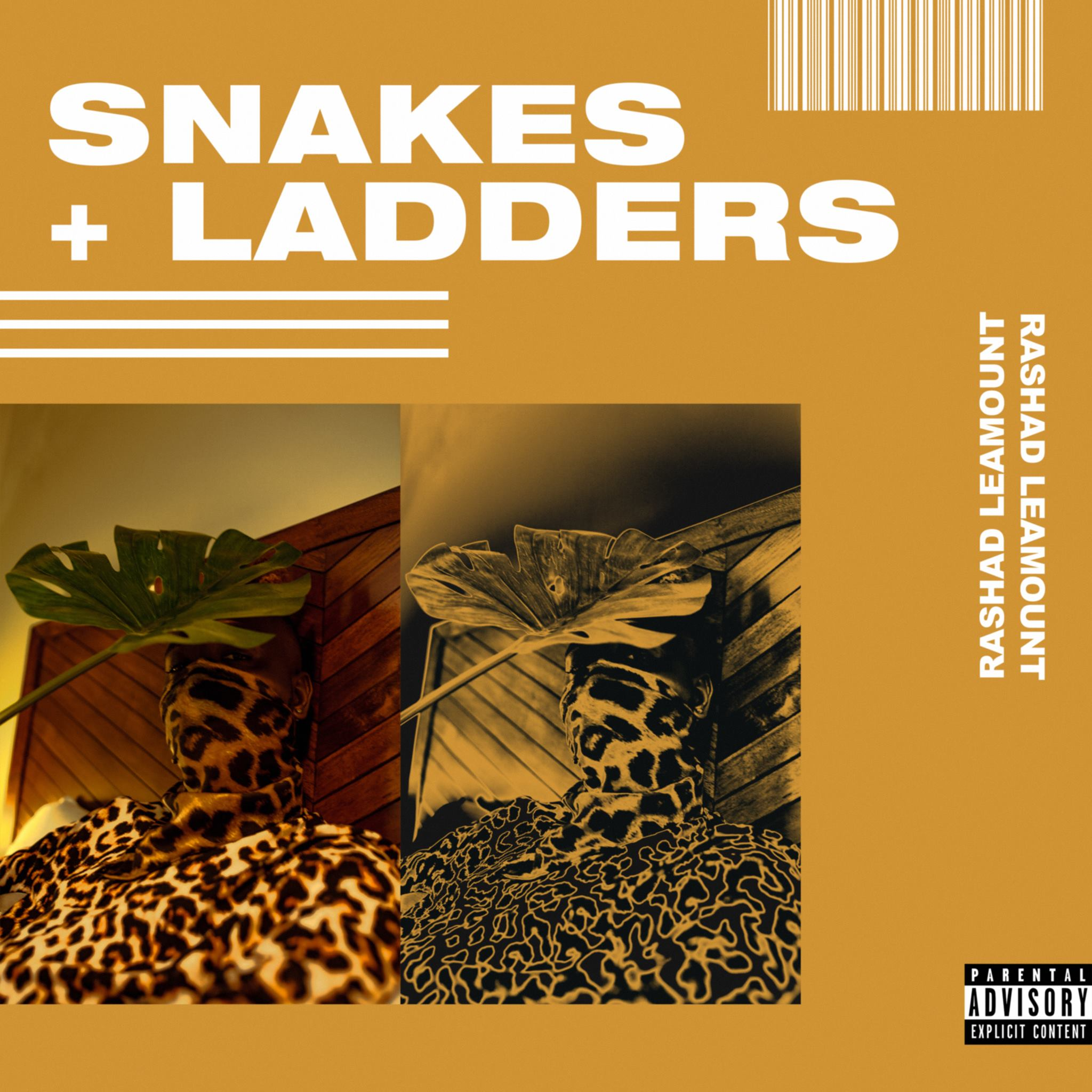 'Snakes + Ladders' cover artwork created by Fonte Designs. Image courtesy of artist Rashad Leamount.